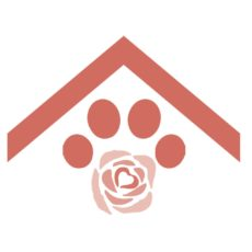 pet shelter icon